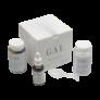 Kép 2/3 - GAL+ Multivitamin -